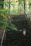 hacklebarney stairs